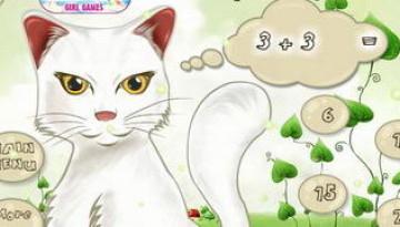 החתול שיודע מתמטיקה