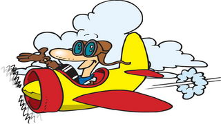 מטוס לצביעה