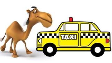 גמל במקום מונית