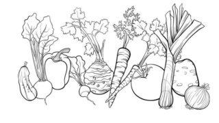 דפי צביעה ירקות