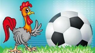 תרנגולות בגמר בכדורגל
