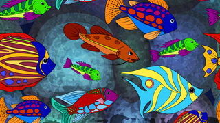 דגים לצביעה