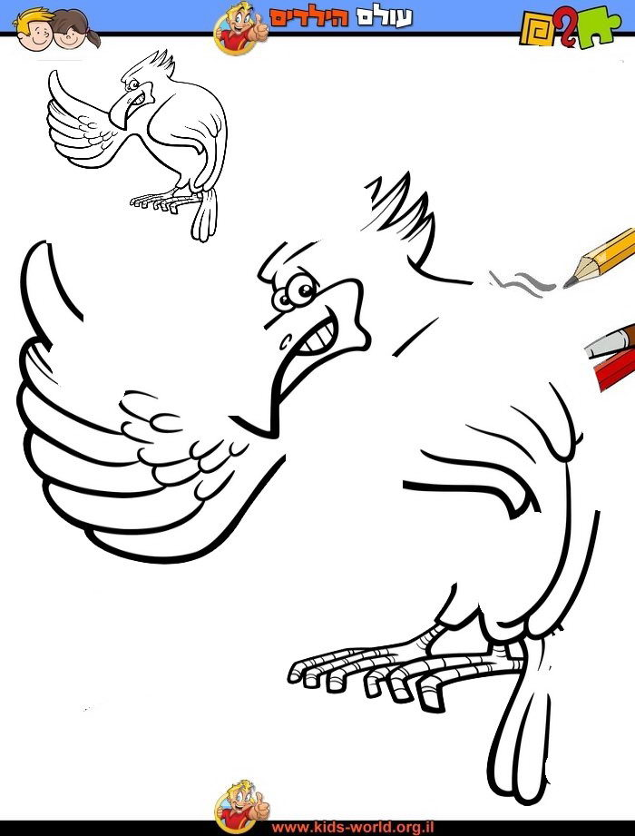 איך מציירים ציפור